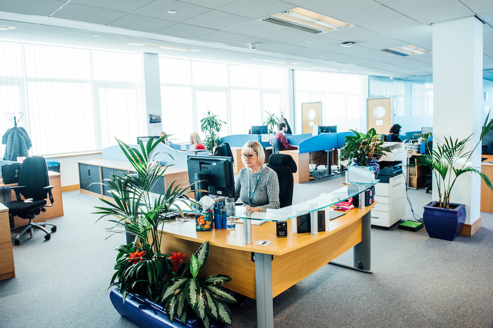Staff working at their desks in the BMA Wales office